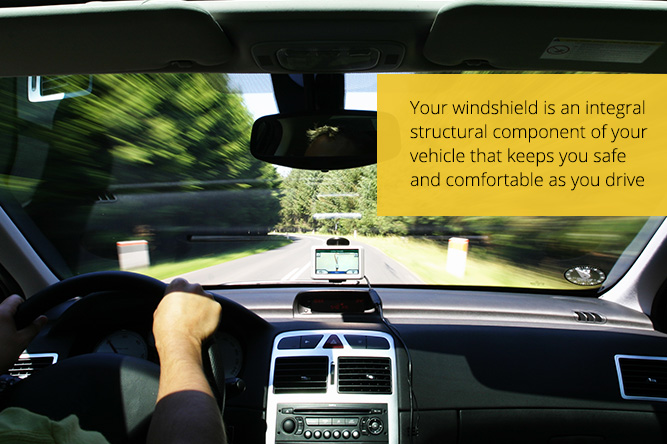 your windshield can save your life in an auto accident
